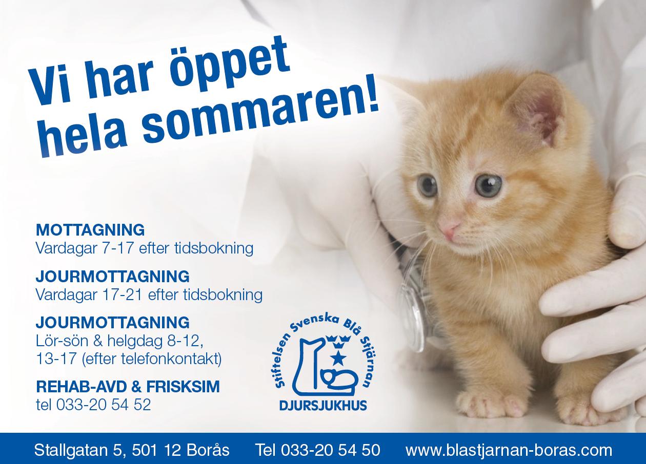 97701529925 Vi har öppet hela sommaren! - Blå Stjärnan Borås